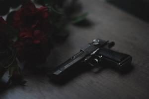 FFL123 handgun in house